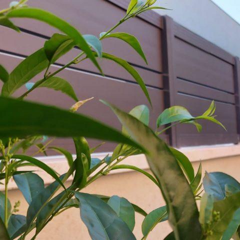 גדרות-גדר פרופילים צבע חום